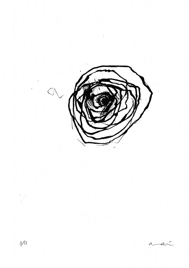 Anaí lago. Le rose I