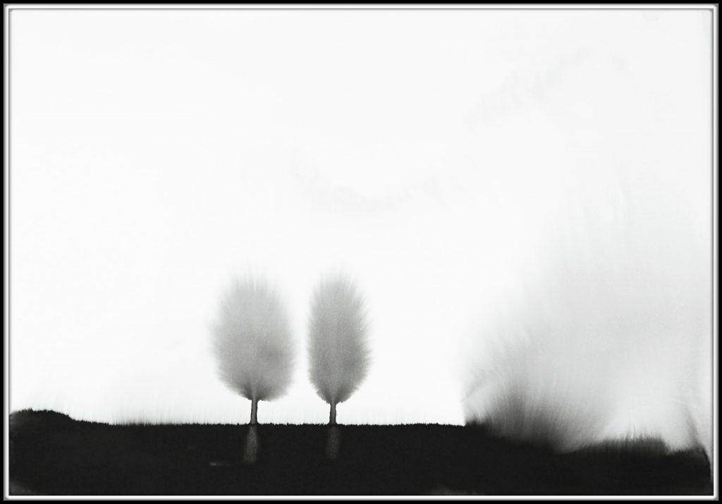 Eden Some 2190. Landscape